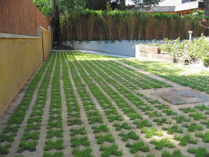 Pavimentos para jardin ideas de disenos for Pavimentos para jardines exteriores