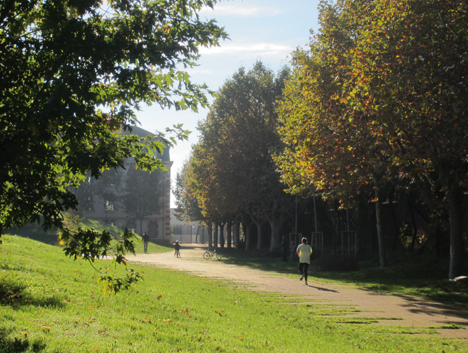 On dise o projects niel garden for Jardin niel toulouse